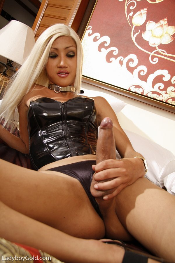 well-hung-asian-ladyboy-in-leather-gets-her-cock-stiff-10