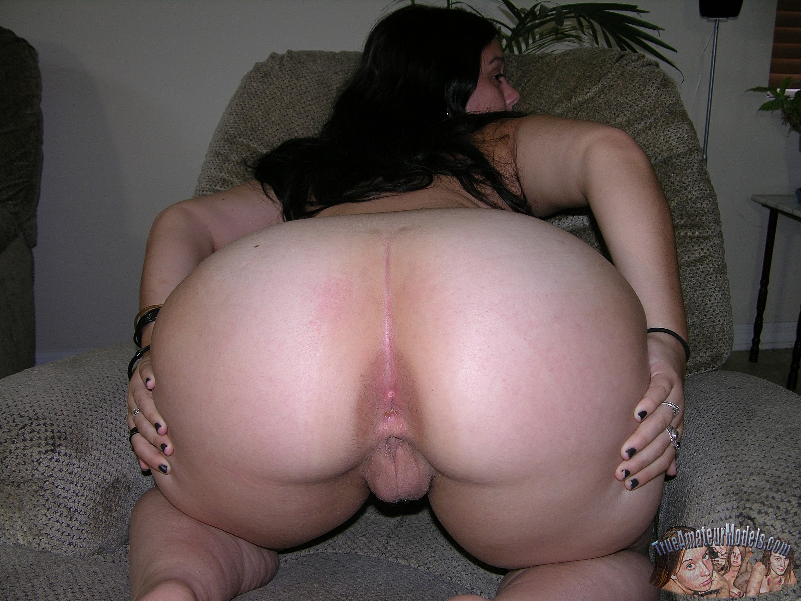 naked chubby girl ass and pussy
